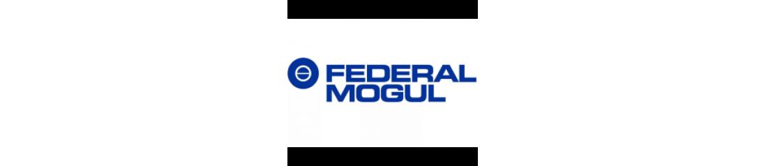 Поршни Federal Mogul / ДЗВ